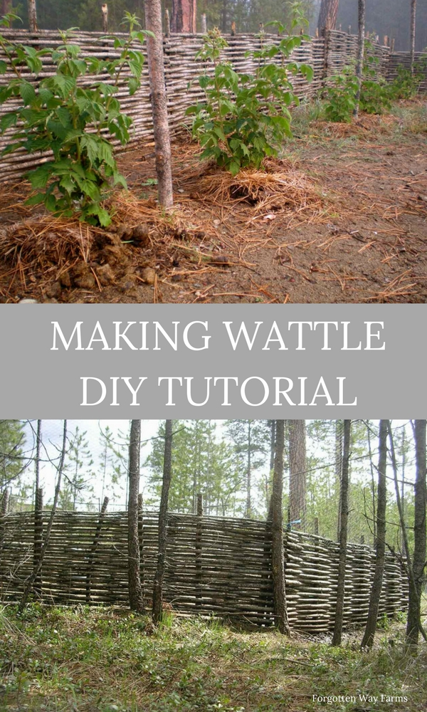 Making Wattle DIY Tutorial at Forgotten Way Farms!