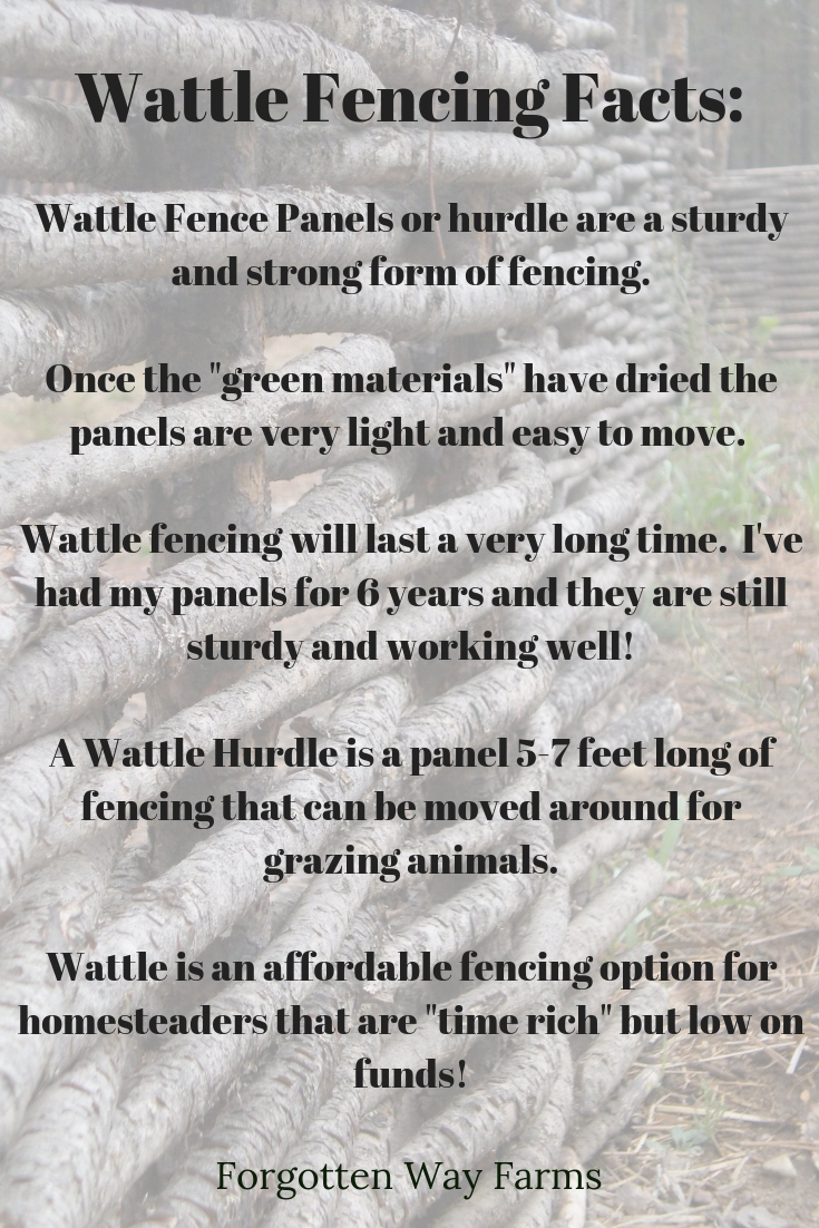 When I see Wattle fencing, I feel the moist British fog clinging to my skin, and a wistful smile crosses my face. And now, you can feel that too! I'm going to show you how to make handmade Wattle Fencing in a simple process.