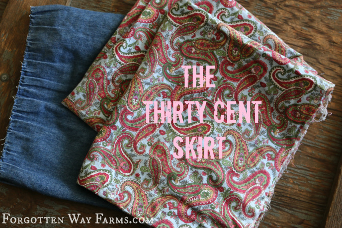 Nifty Thrifty Thirty Cent Skirt