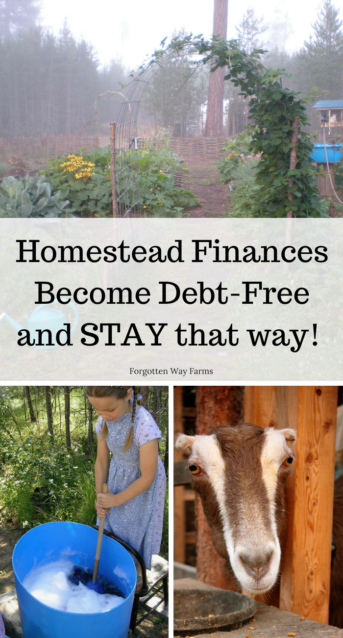 Homestead Finances How to get Debt-Free and STAY that way. Read our top seven tips at Forgotten Ways Farms Blog!