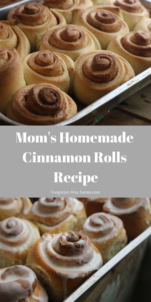 My Mom's Cinnamon Rolls Recipe~Forgotten Way Farms Blog