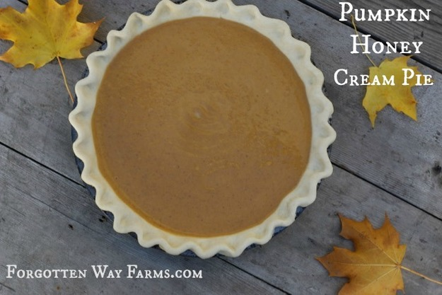 Homemade Pumpkin Cream Pie Honey Easy Recipe