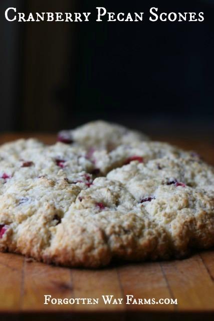 cranberry pecan scones