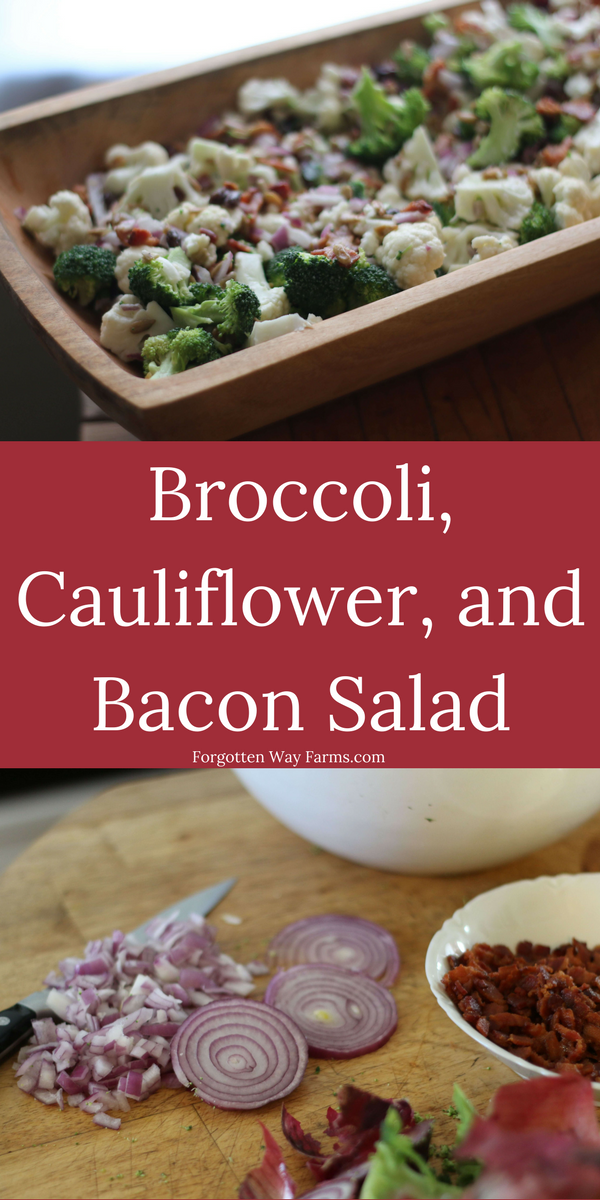This Broccoli, Cauliflower, and Bacon Salad is such a simple salad to mix up for the holidays or any day for that matter. Yummy!