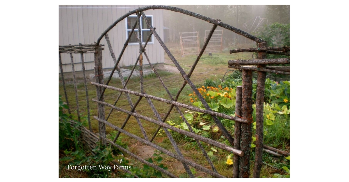 Forgotten Way Farms is the coziest blog. Always a joy to read!