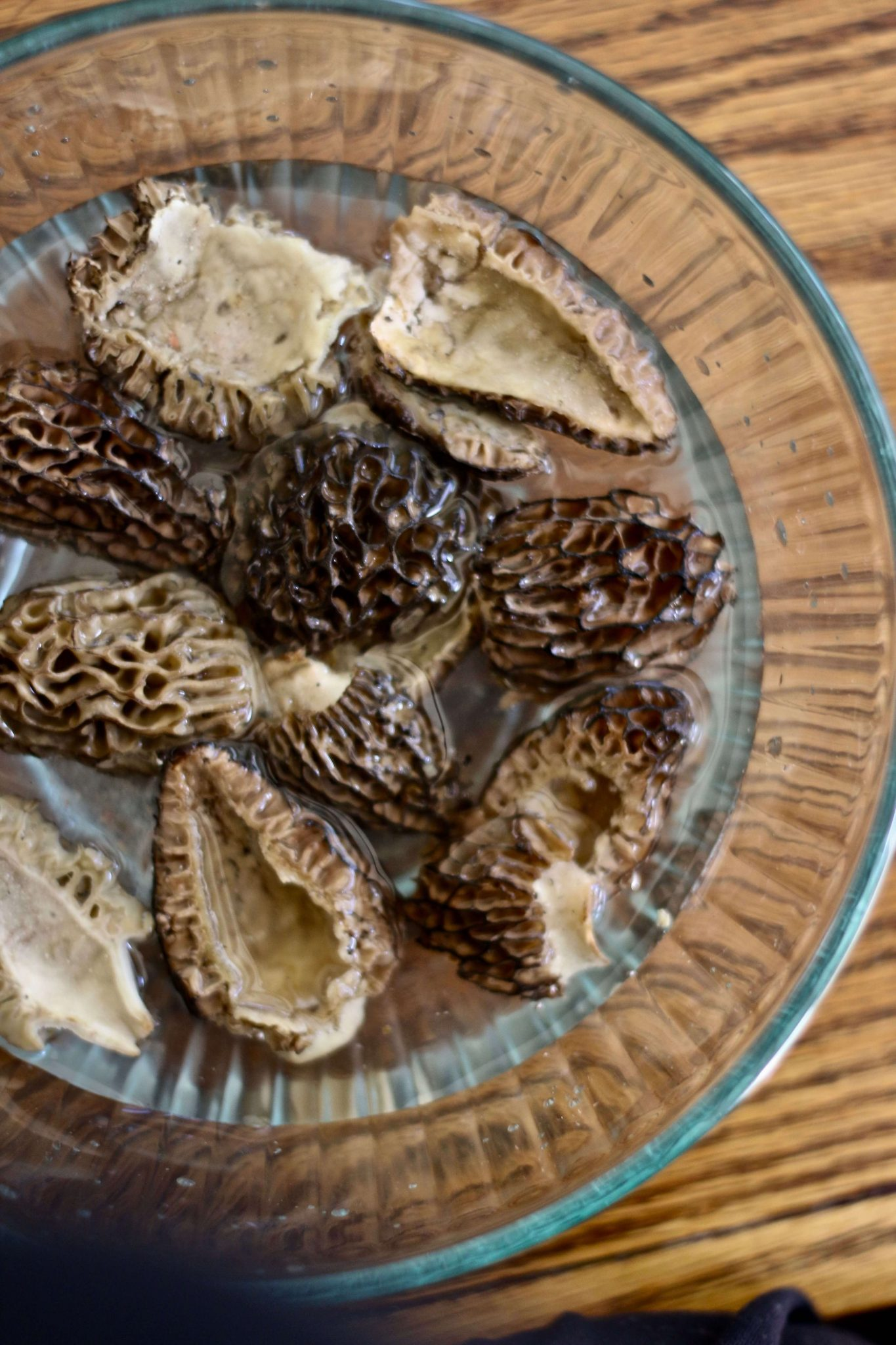 Hmmm, soaking the Morel mushrooms in salt water. Prepping for Wild Morel Mushroom Soup, an easy and delicious recipe from Forgotten Way Farms.