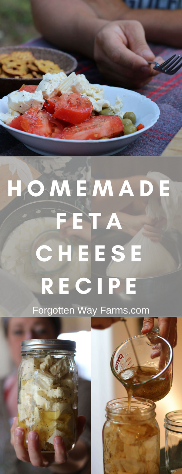 Homemade Feta Cheese Recipe from Forgotten Way Farms Blog
