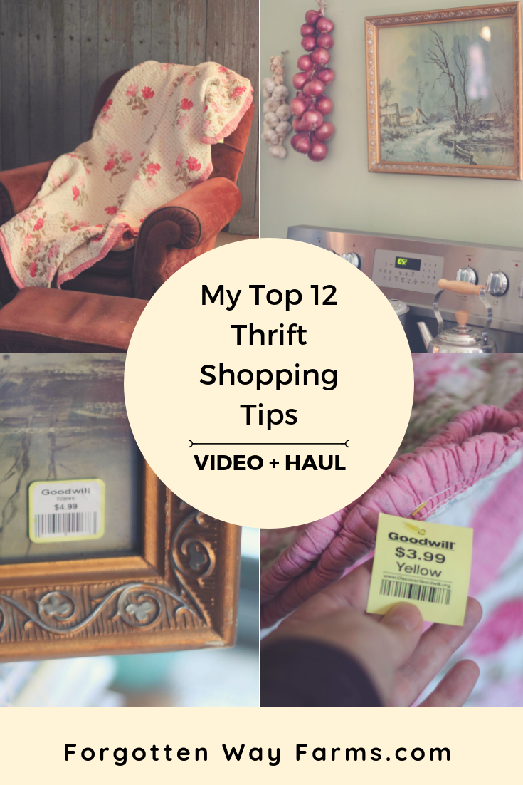 My thrift shopping guide will help you to sift through that junk store, flip through those consignment clothes, stretch that clothing budget to the max, and bring home your next Goodwill haul. And thrifting is a great hands-on way to learn how to budget with kids and save money to pay off debt. What's to lose?