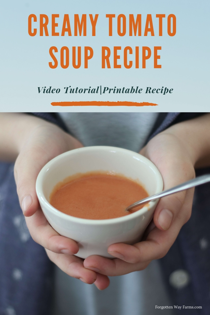 This Homemade Creamy Tomato Soup Recipe is amazing! So yummy, delicious and easy. My favorite kind of recipe! Homemade Easy Soup Recipes are the best. Tomato Soup Recipe and Video Tutorial.