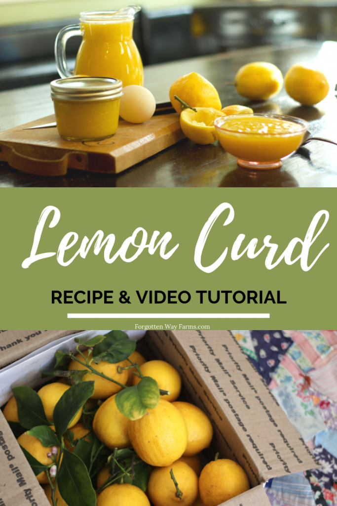 Easy Homemade Lemon Curd Printable Recipe & Video Tutorial  #easydesserts #lemoncurd #pavlova #lemondessert #easylemoncurd #cookingfromscratch