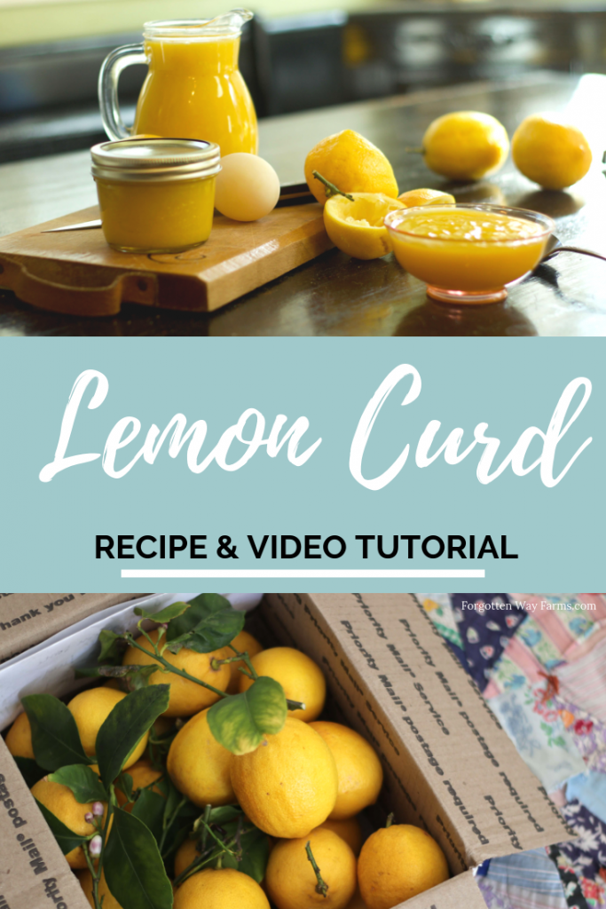 Super Easy and Delicious Homemade Lemon Curd Recipe from Forgotten Way Farms #easydesserts #lemoncurd #pavlova #lemondessert #easylemoncurd #cookingfromscratch #budgetrecipes
