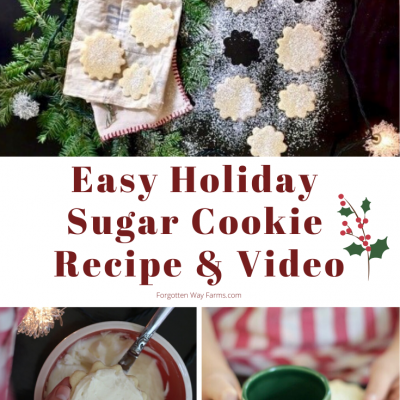 Easy Sugar Cookie Recipe|Holiday Cookie Exchange Recipe Swap