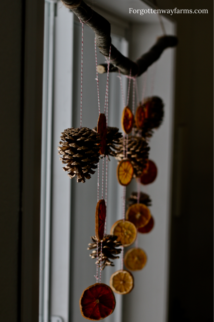 A pinecone and citrus mobile hanging in a window