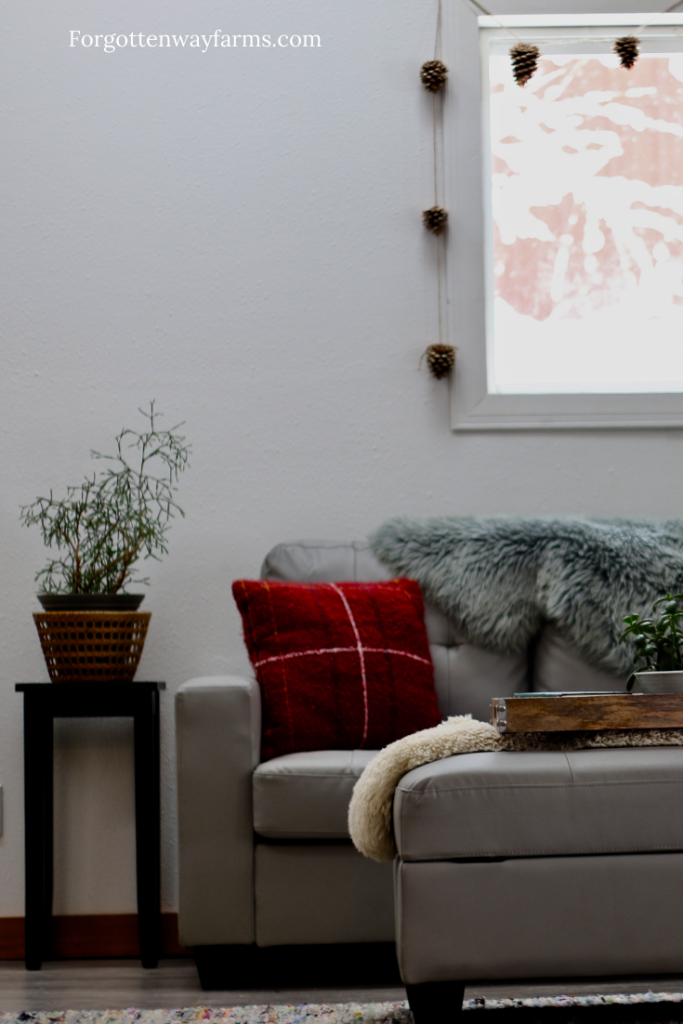 A grey couch covered in furs, blankets and red pillows in a Cozy Living Room, with a plant beside the couch.