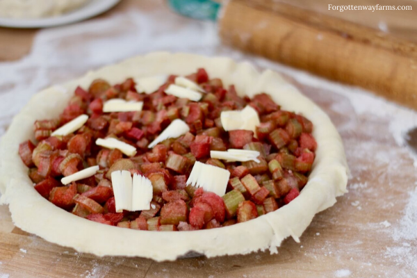 Rhubarb Pie filling in an uncovered pie crust