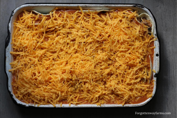 Enchiladas covered in sauce and grated cheddar cheese.