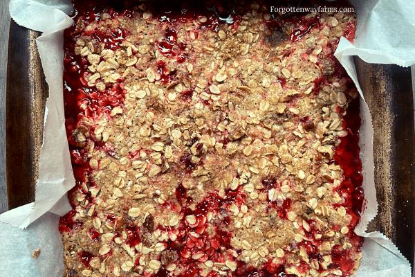 Freshly baked Rhubarb Crisp.