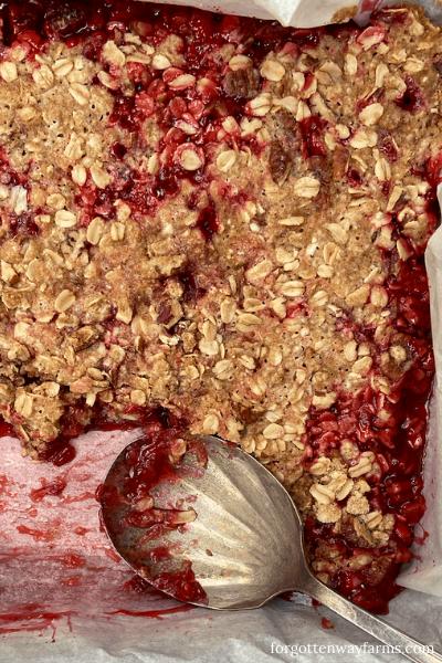 Easy Gluten-Free Strawberry Rhubarb Crisp