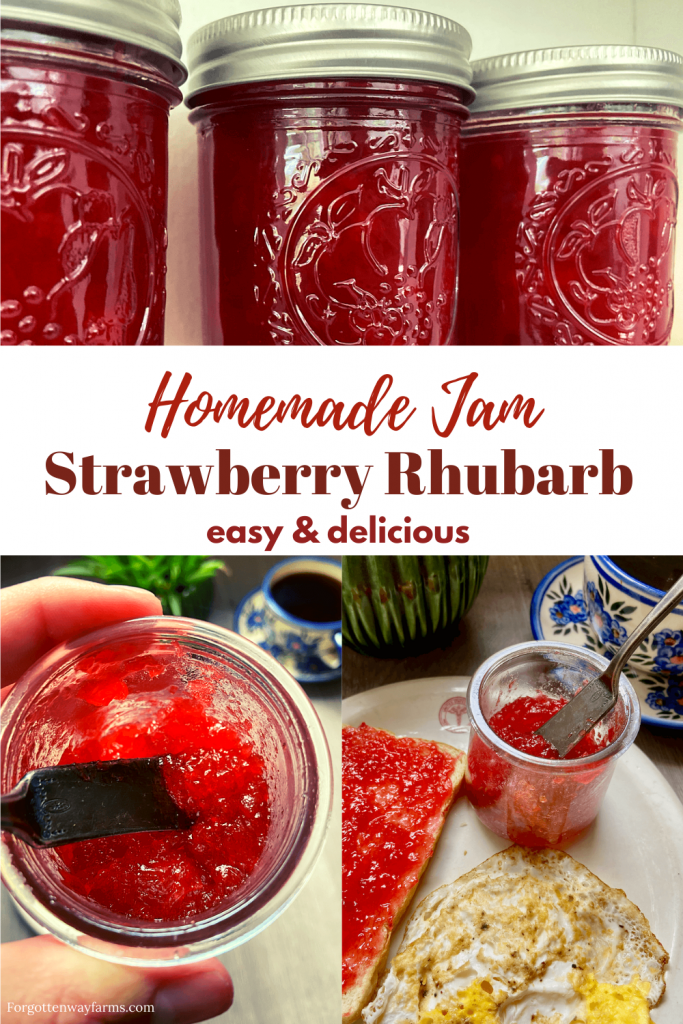 "Jars of preserves with a banner that says ""Homemade preserves strawberry/rhubarb. Easy and delicious."""
