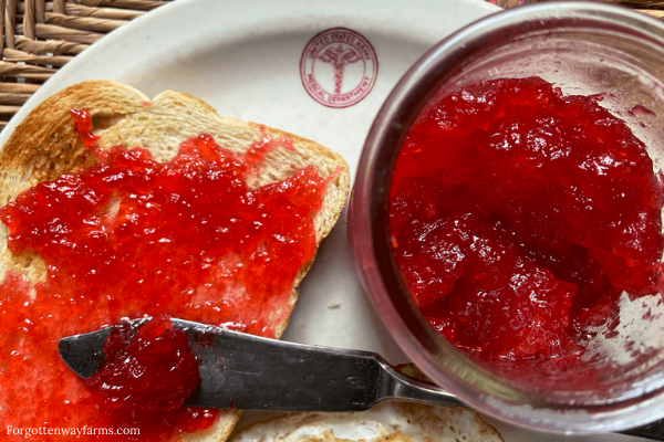 Strawberry Rhubarb preserves, spread on toast.