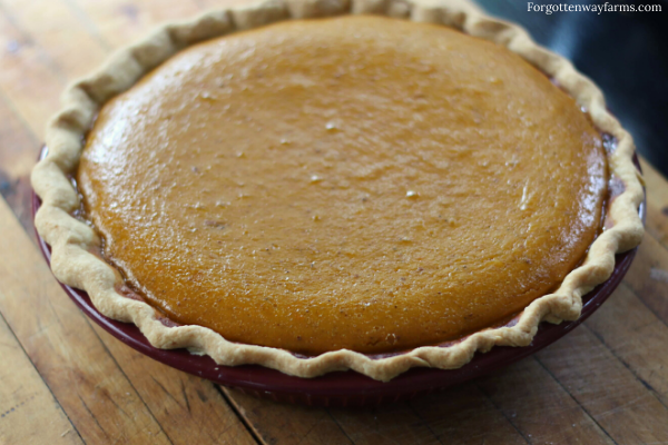Homemade Pumpkin Cream Pie sweetened with honey